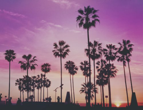 Sober Living in Los Angeles: A Guide to Finding Help and Support