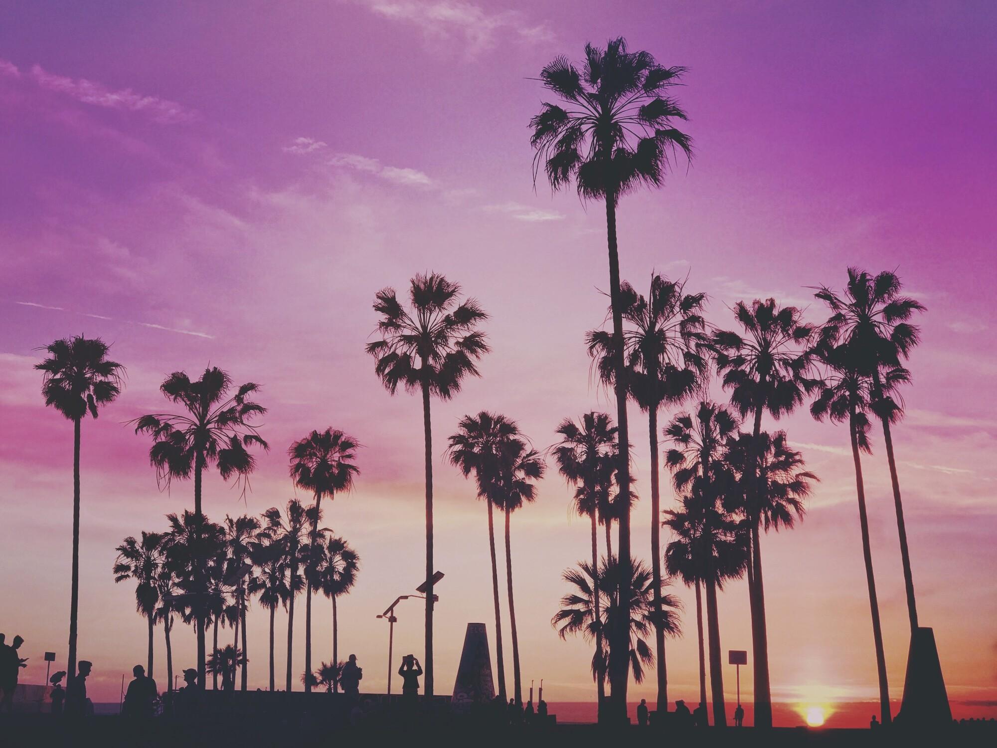 sober living in Los Angeles